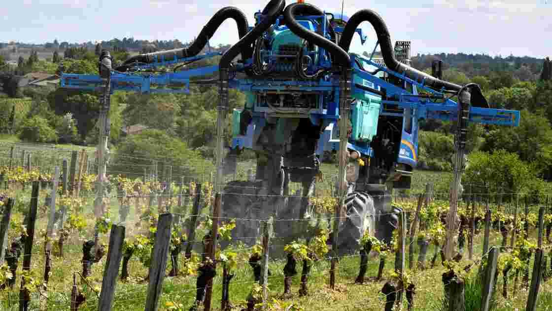 Agriculture bio: l'UE prolonge l'autorisation du cuivre malgré les risques