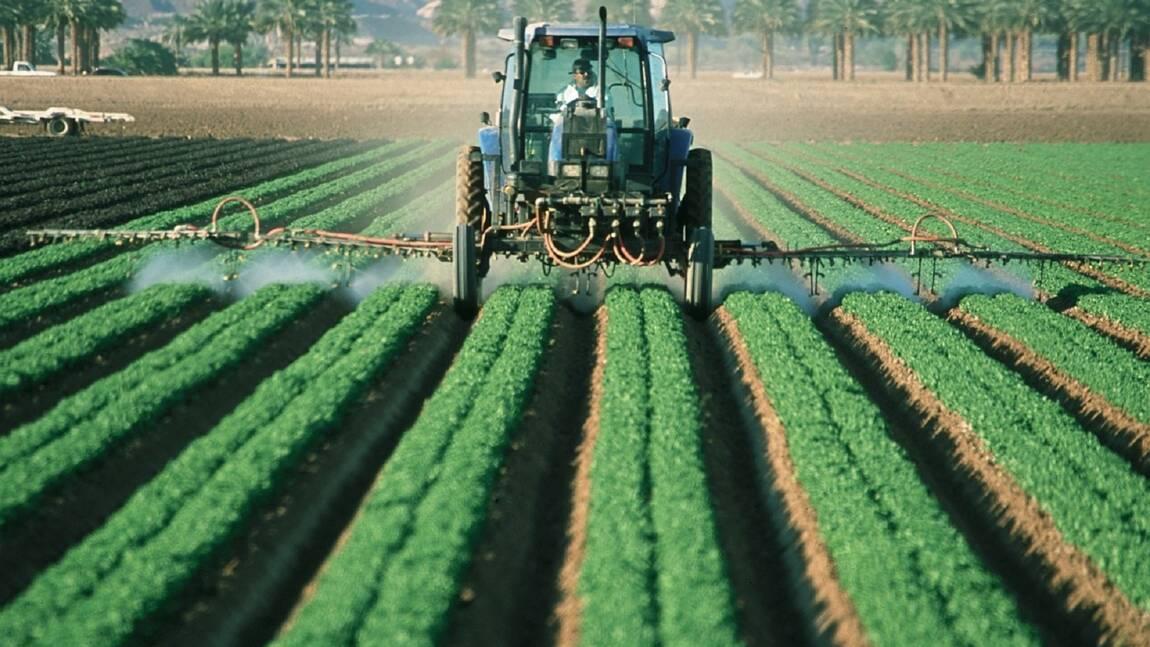 Pesticides : définition, utilisation et alternative