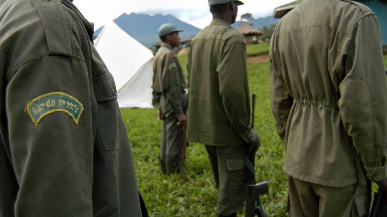 Est de la RDC: au moins un mort dans le parc des Virunga