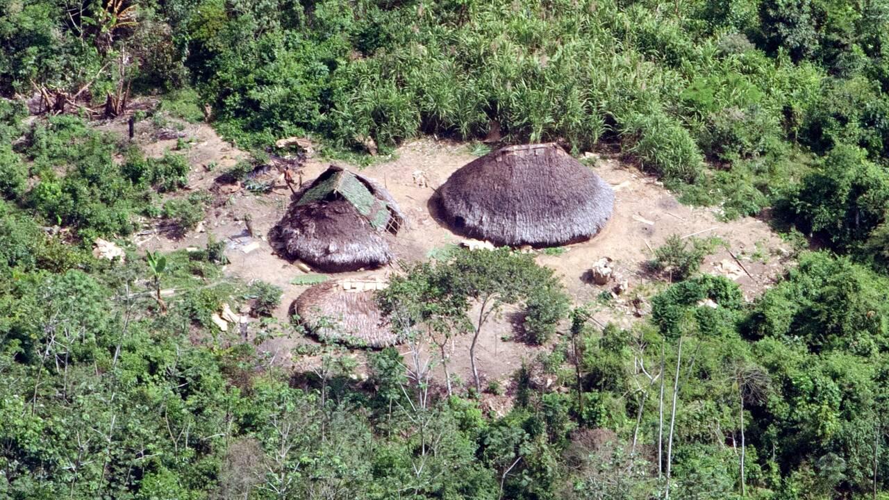 En Amazonie, les peuples autochtones isolés toujours plus menacés