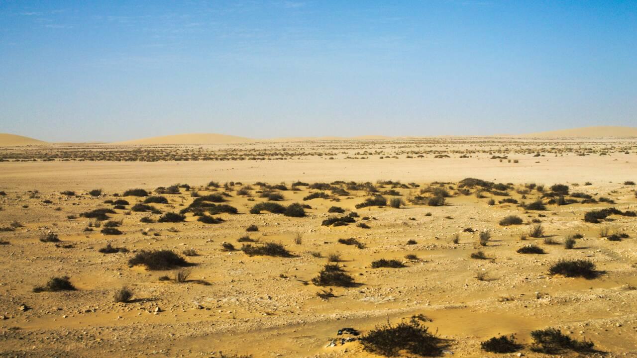 L'avenir du Sahara occidental, un dialogue bientôt relancé grâce à une rencontre à Genève ?