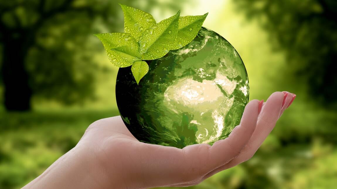 Qu'est-ce que l'empreinte écologique et comment la calculer ?