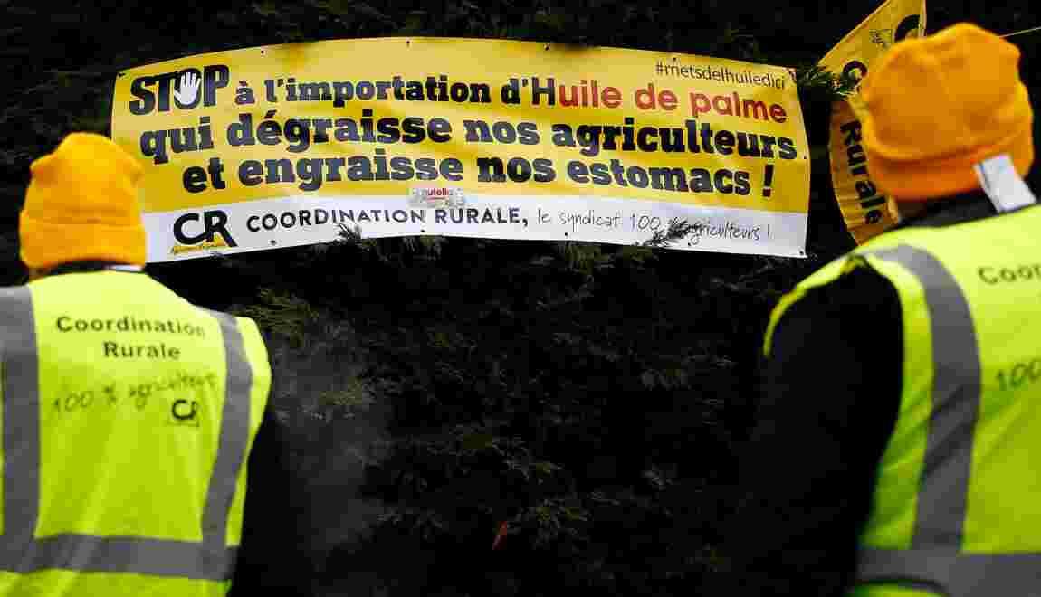 Le Sénat revient sur l'exclusion de l'huile de palme des biocarburants