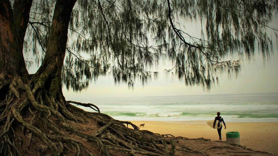 Le top des destinations pour faire du surf