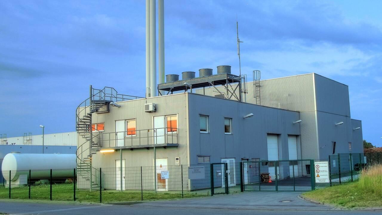 Energie : qu'est-ce que la biomasse ?