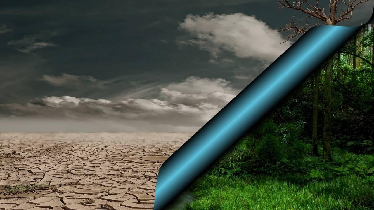 Qui sont les climato-sceptiques et sur quelles théories se basent-ils ?
