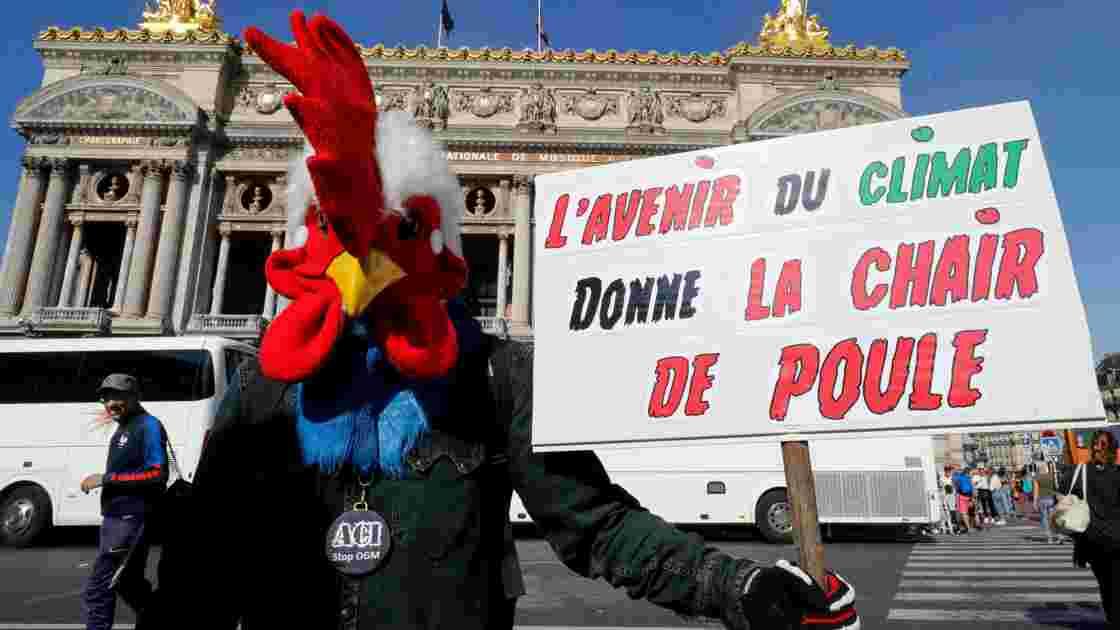 Réchauffement climatique: 2018, année de tous les records en France