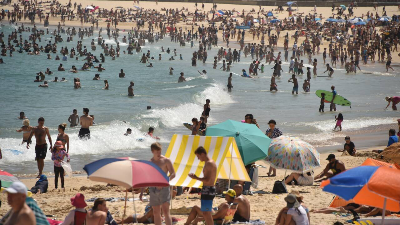 Australie: records de chaleur et bières gratuites