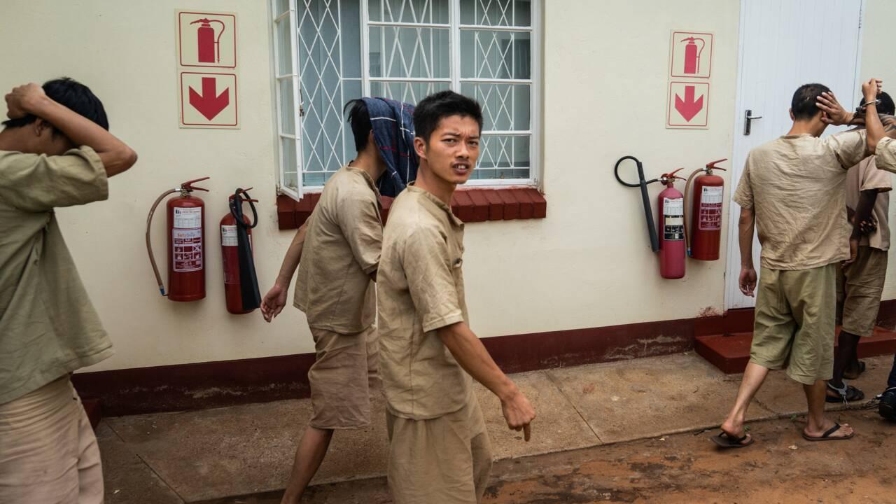 Zimbabwe: comparution de 7 Chinois pour possession de cornes de rhinocéros