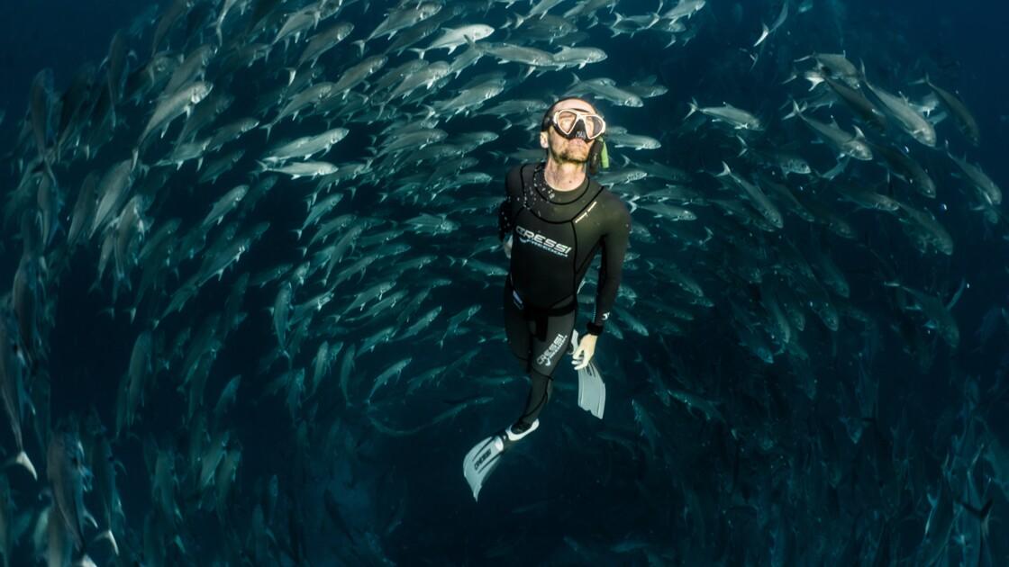 Les Galápagos avec Guillaume Néry, champion du monde d'apnée