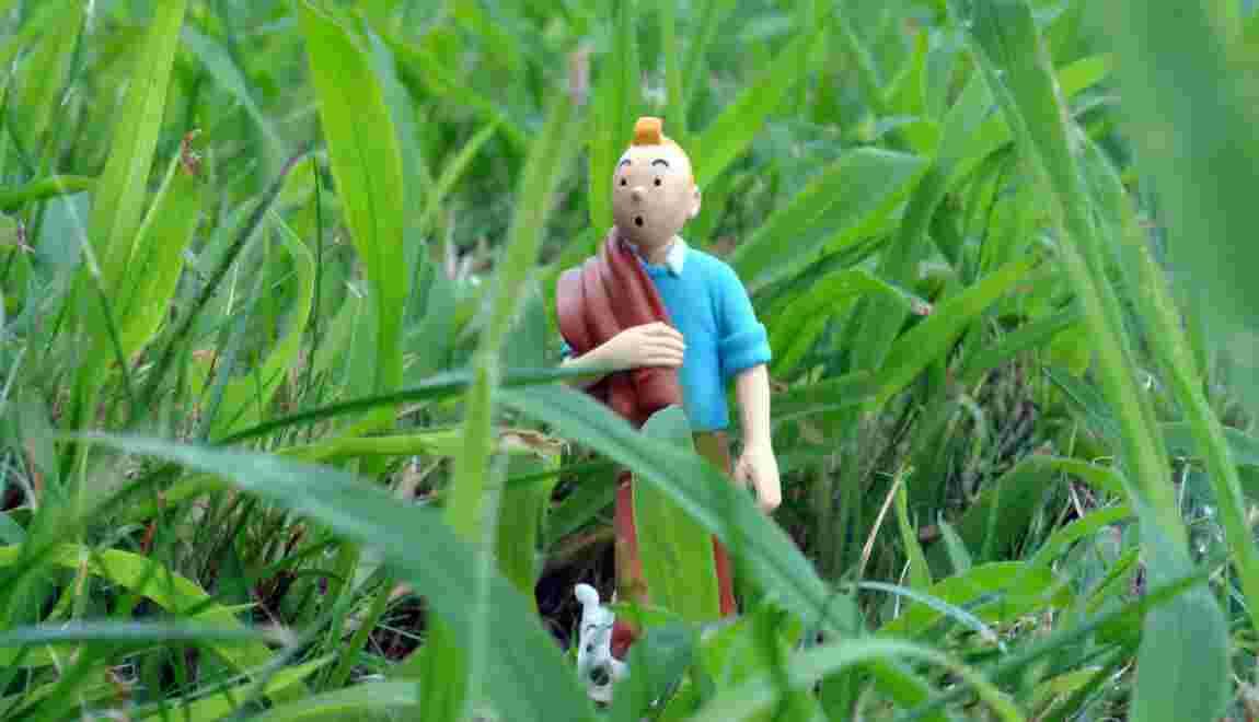 """Philippe Descola : """"Tintin, c'est un superadolescent qui a l'appétit du monde"""""""