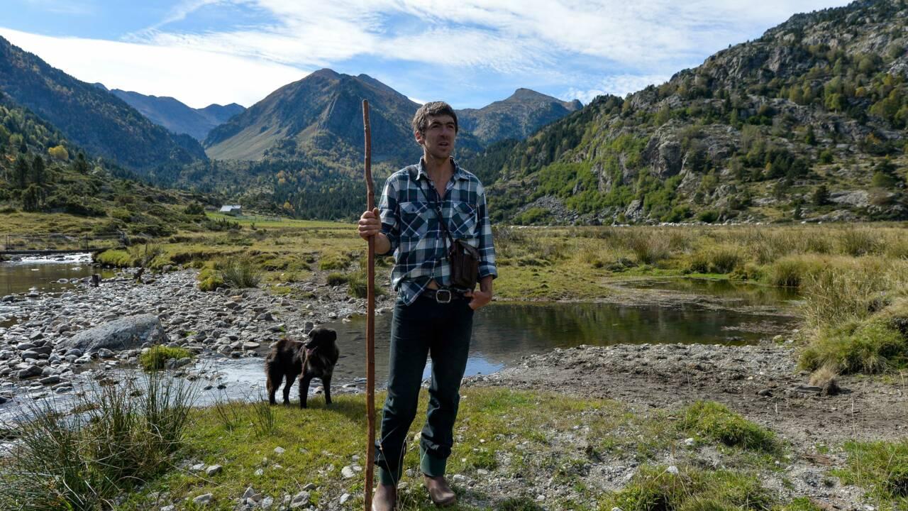 Brice Delsouiller, le vacher des Pyrénées devenu champion de trail