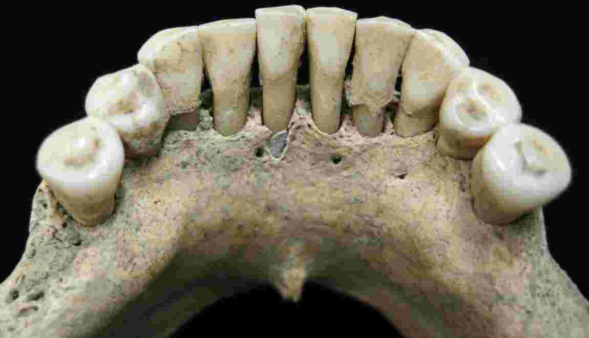 En Allemagne, les restes d'une nonne morte il y a 1.000 ans bousculent les connaissances