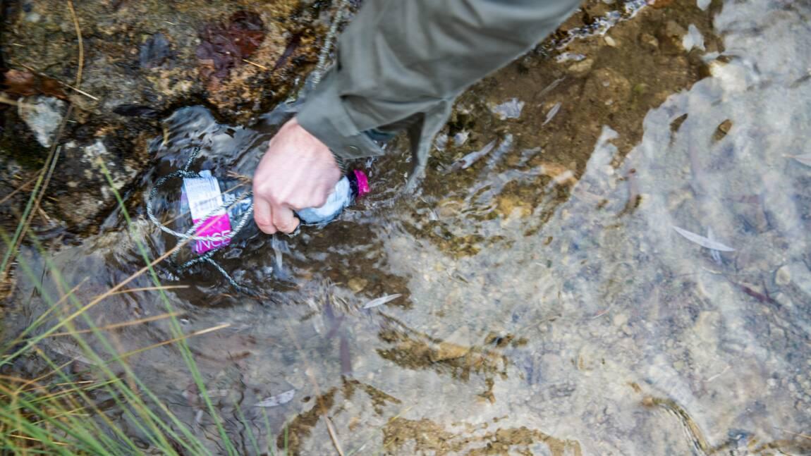 Survivre dans la nature : comment filtrer son eau
