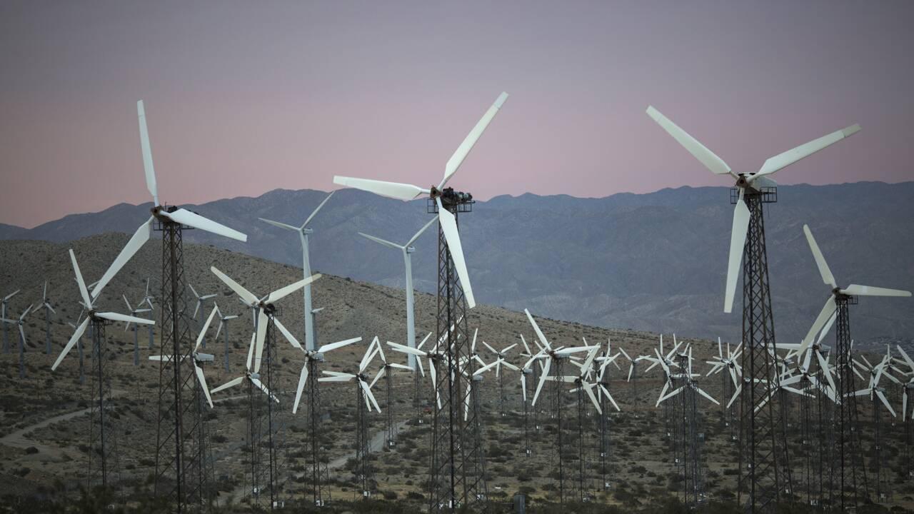 Restaurer l'environnement: quand les solutions deviennent problèmes