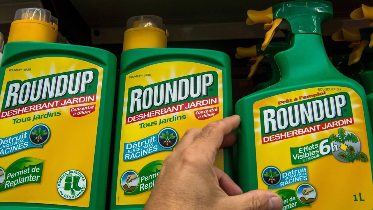 Glyphosate: l'interdiction d'utiliser du Roundup Pro 360 effective