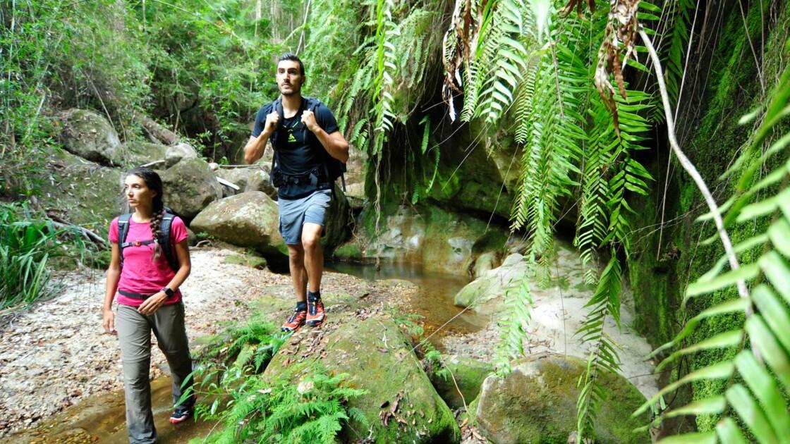 Les Natexplorers, anges gardiens de la biodiversité menacée
