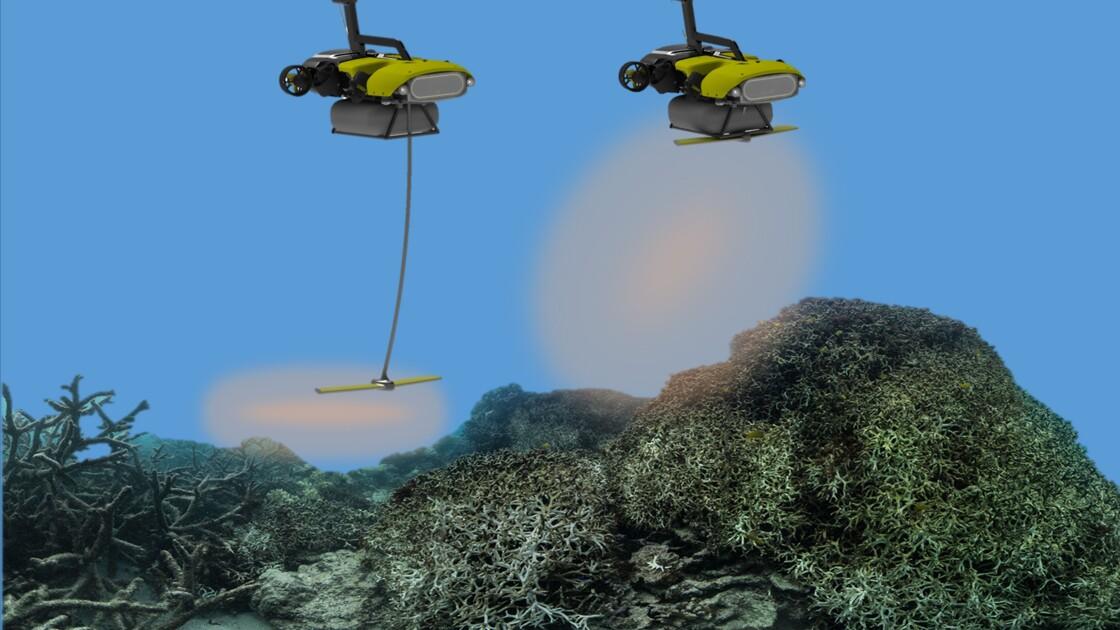 En Australie, un robot pour sauver la Grande Barrière de corail ?