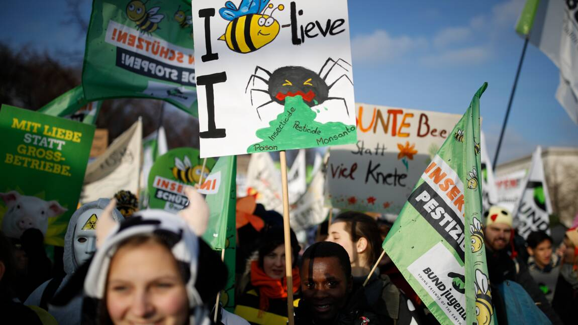 Grande manifestation à Berlin contre l'agriculture industrielle