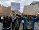 """""""Aux arbres, citoyens!"""": nouvelle mobilisation en France autour du climat"""