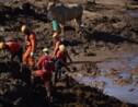 Rupture d'un barrage au Brésil: impact incertain sur l'environnement