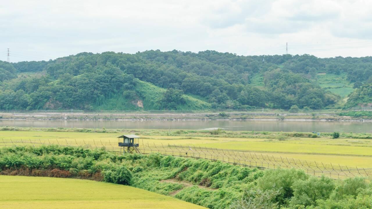 A la frontière des deux Corée, une improbable réserve naturelle