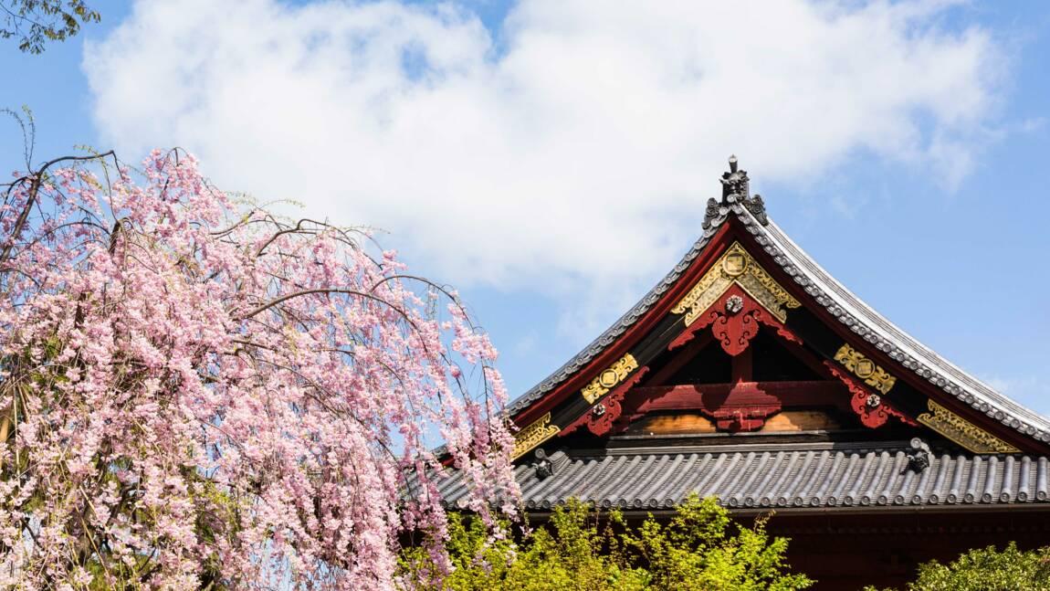 Le Japon offre des maisons pour repeupler ses campagnes