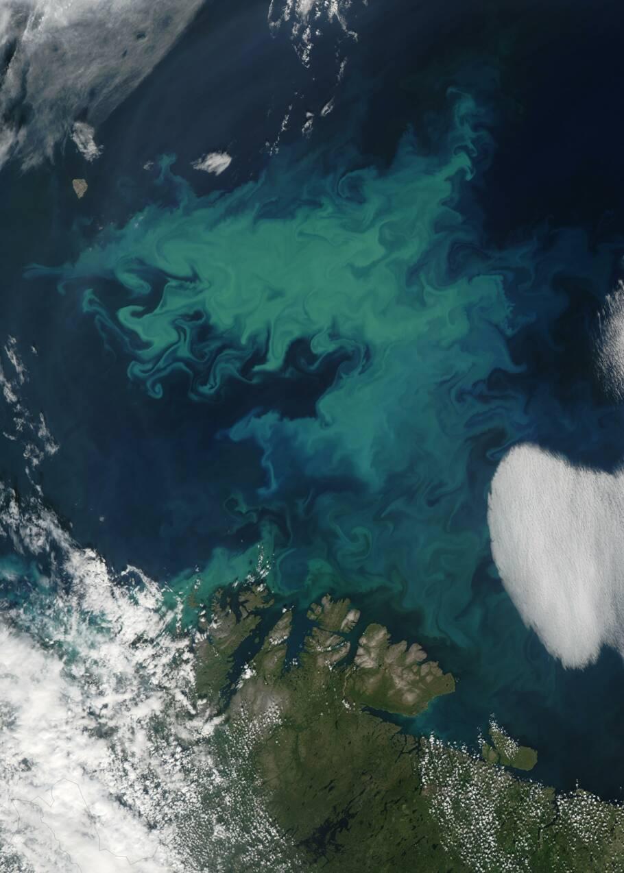 Les océans pourraient devenir encore plus bleus à cause du changement climatique