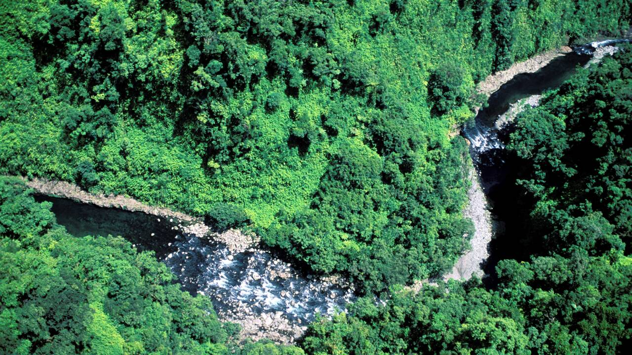 Île de La Réunion, Saint-Benoît : Kayak-raft pour fous rires garantis
