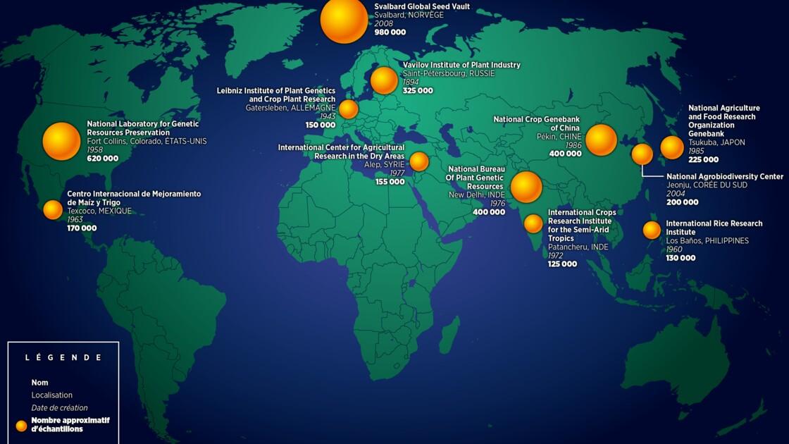 Où se trouvent les 12 plus grandes banques de graines de la planète ?