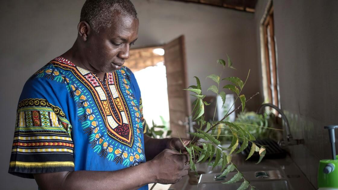 """Centrafrique: l'agriculteur écolo et les """"soldats de la terre"""""""