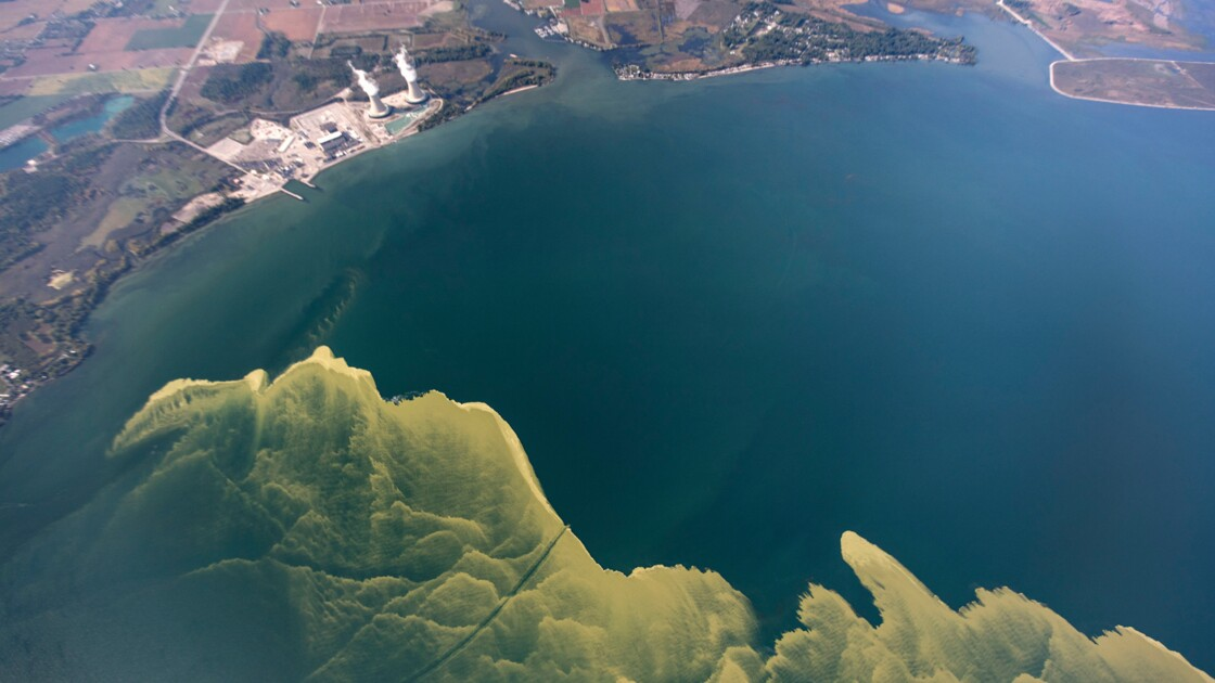 """Aux Etats-Unis, bientôt une """"Déclaration des droits du lac Erié"""" ?"""
