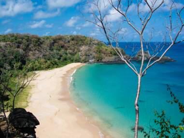 Les 25 plus belles plages du monde d'après TripAdvisor