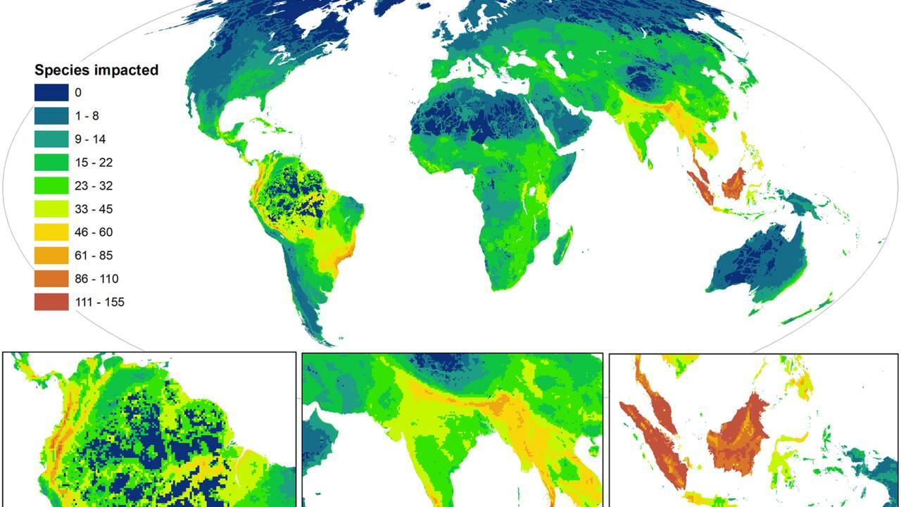 Cette carte montre la répartition des espèces les plus menacées