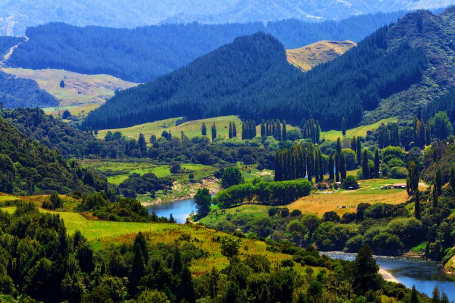 Le fleuve Whanganui