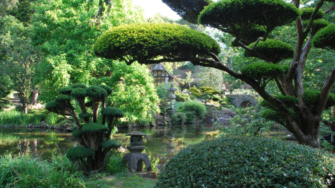 Jardin japonais : découvrez la beauté de Parc Oriental de Maulévrier près de Nantes