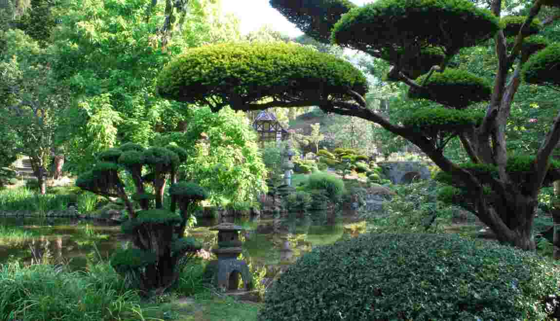 jardin japonais d couvrez la beaut de parc oriental de. Black Bedroom Furniture Sets. Home Design Ideas