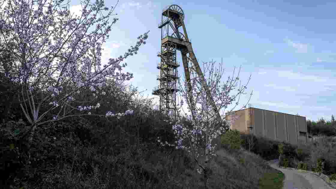 Taux d'arsenic élevé chez des enfants: deux nouveaux cas dans l'Aude
