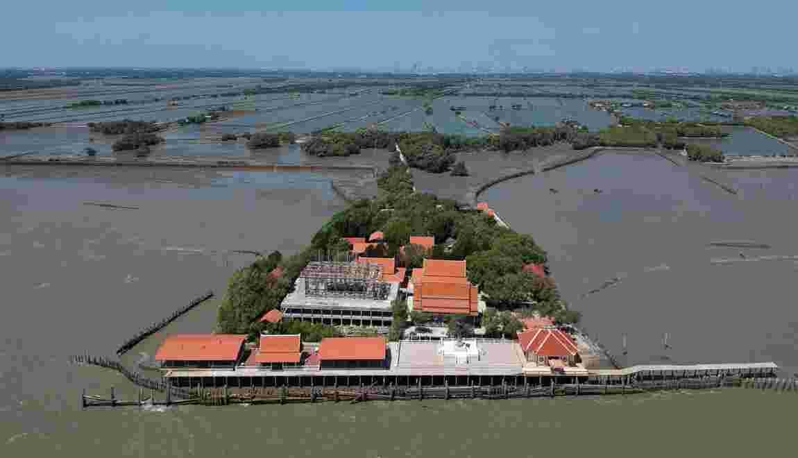 Thaïlande: replanter la mangrove contre l'érosion et pour sauver un temple