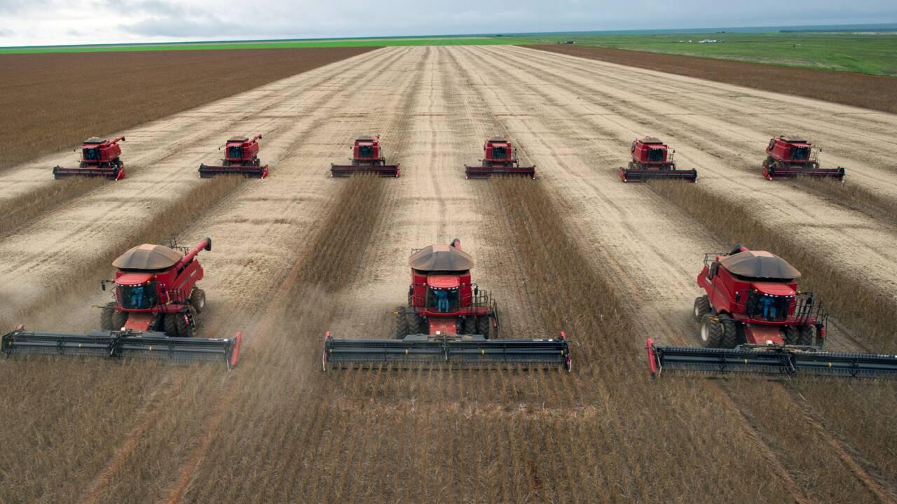 Brésil: 20% des exportations vers l'UE issues de terres déboisées illégalement