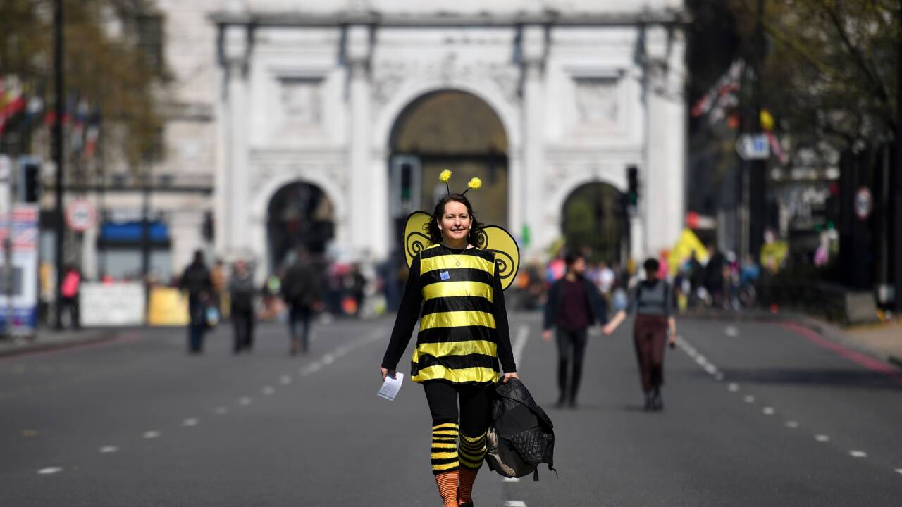 """Blocages à Londres pour un """"état d'urgence écologique"""""""