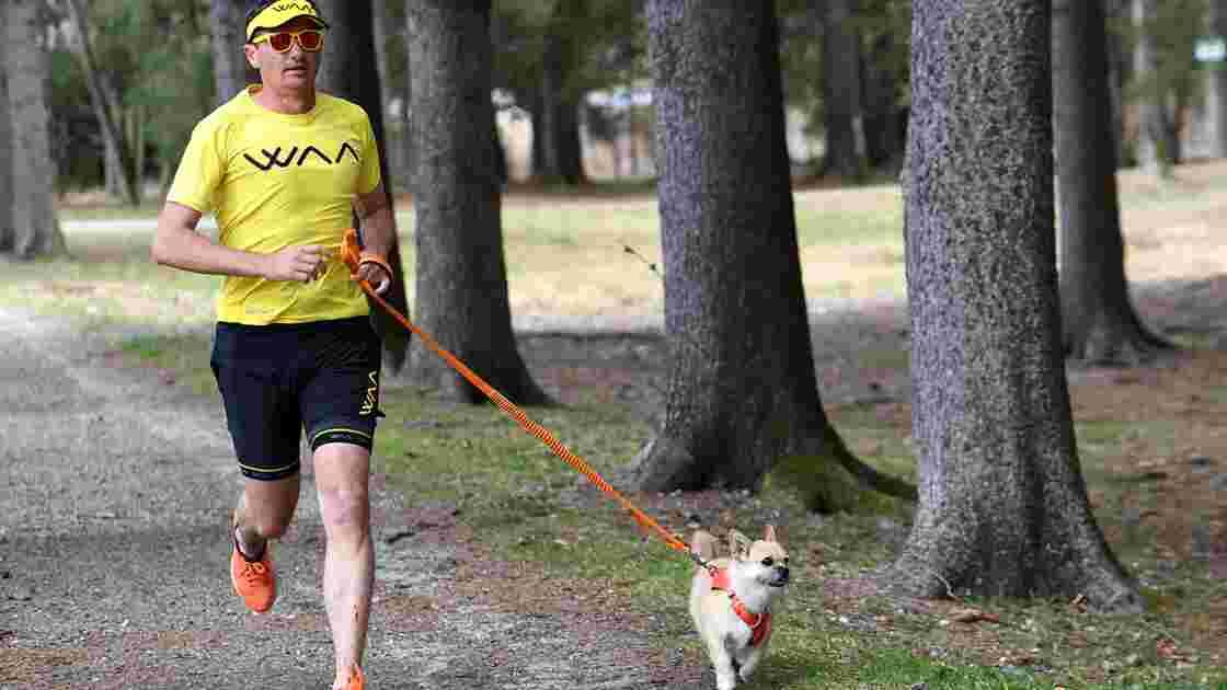 L'histoire de Gobi, la petite chienne errante qui a suivi un marathonien en plein désert
