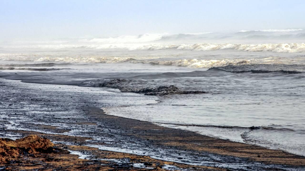 Nouvelle-Zélande : un nouveau rapport environnemental inquiétant