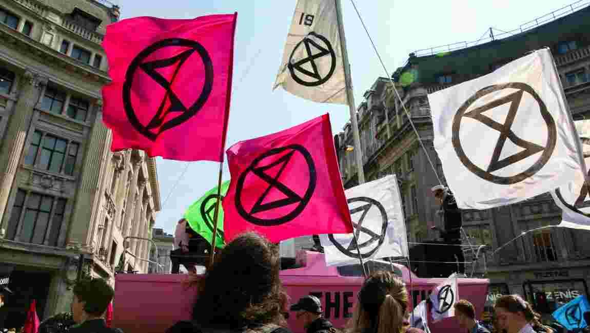 Crise climatique : que signifie le symbole arboré par les manifestants ?