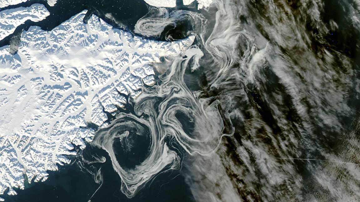 """Des chercheurs ont calculé la fonte du Groenland depuis 1972 : """"Ça fait peur"""""""
