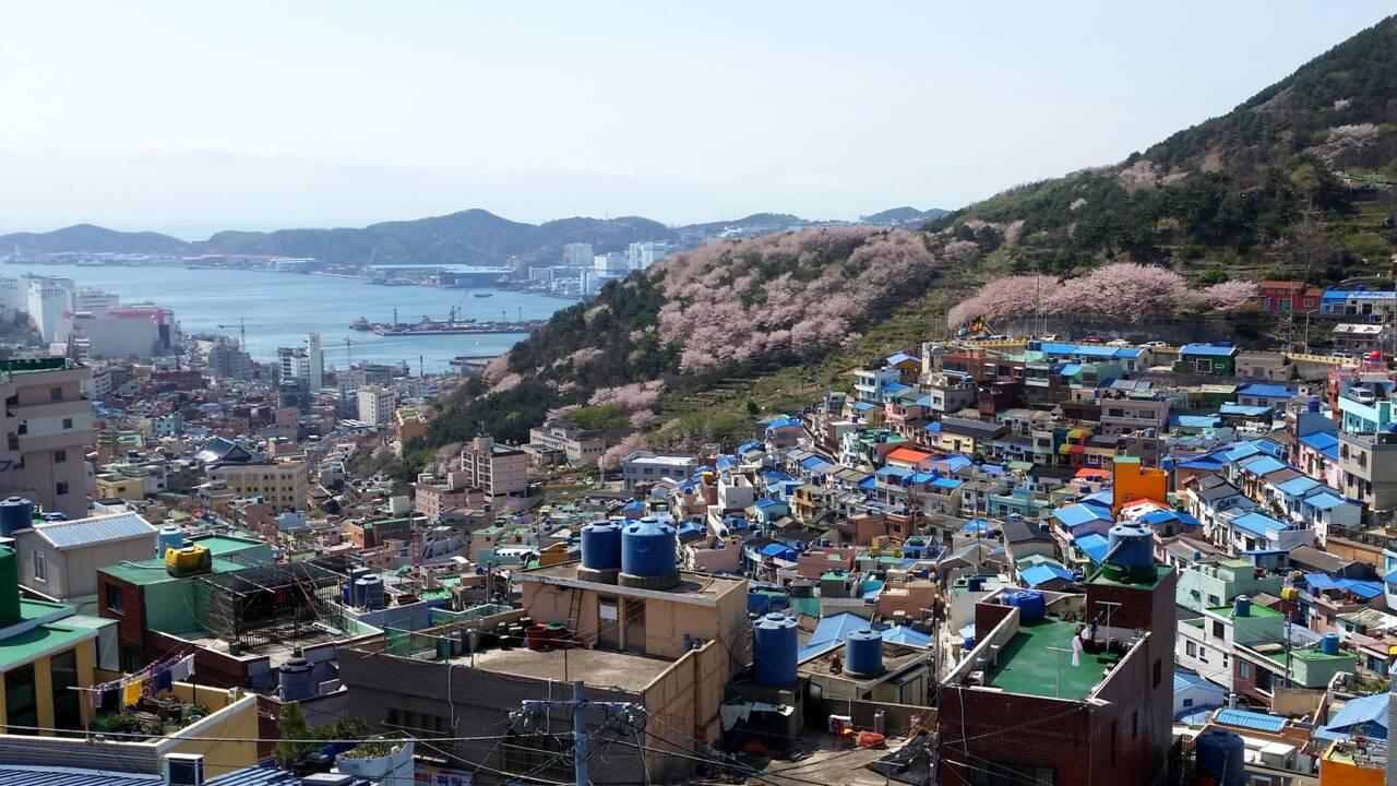 Corée du Sud : 12 choses à faire au pays du matin clair