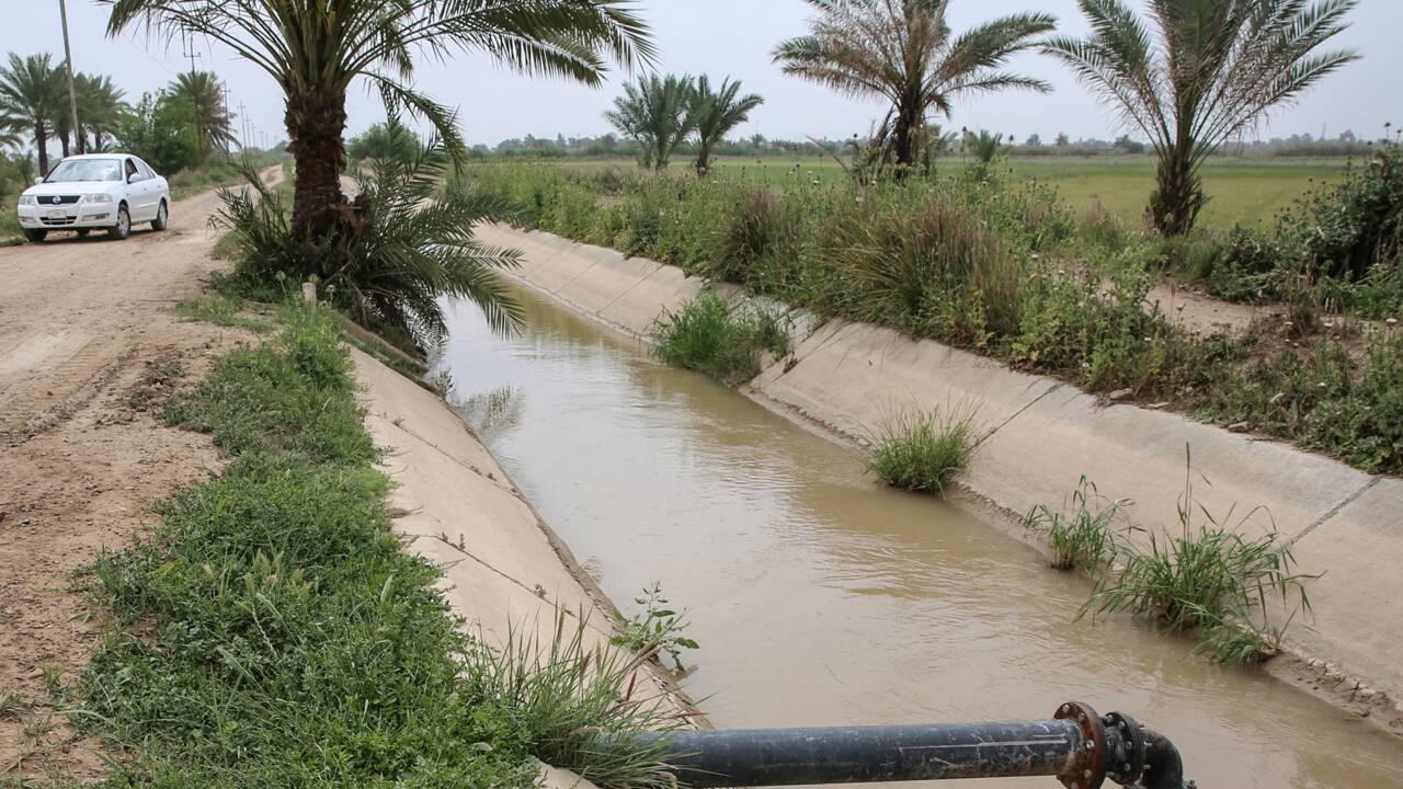 En Irak, les réservoirs sont pleins mais la crise de l'eau persiste