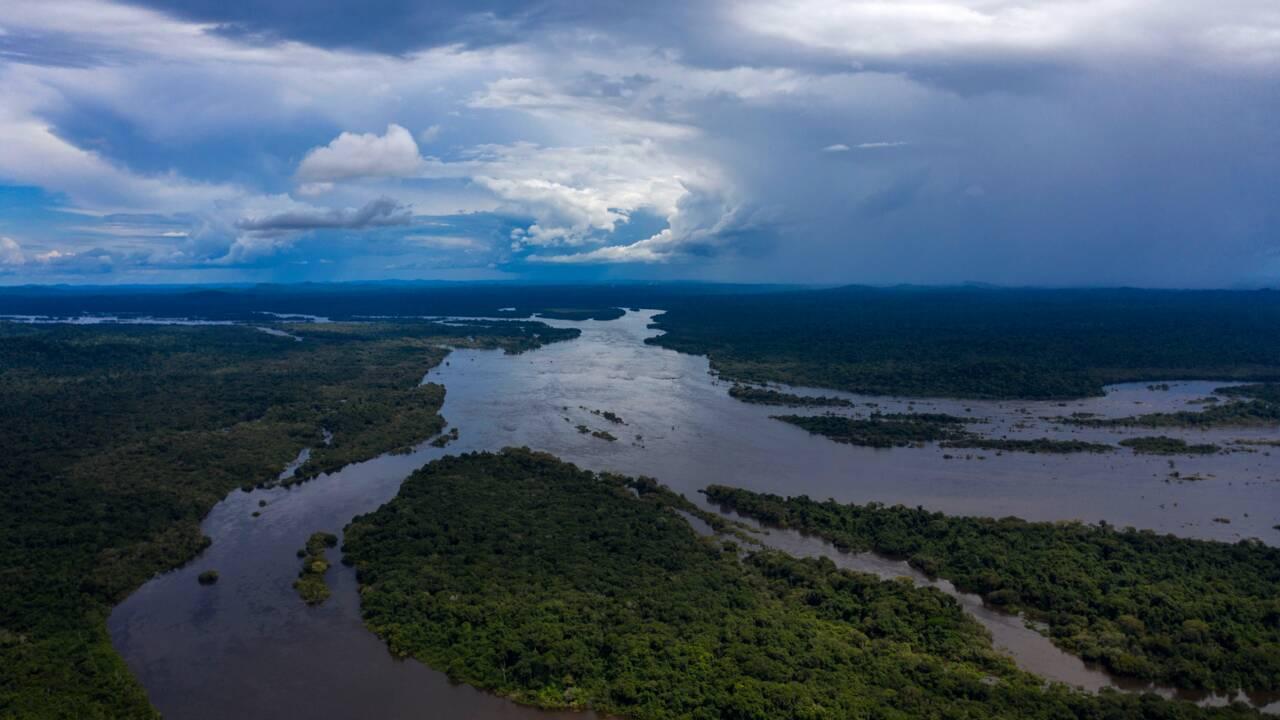 Alerte sur des sanctuaires de la biodiversité au Brésil
