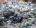 Comment la Norvège recycle 97 % de ses bouteilles en plastique