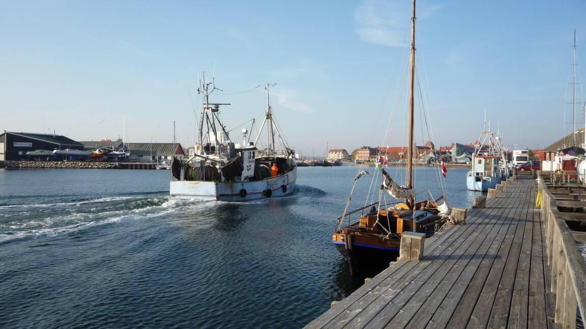 La France interdit la pêche électrique dans ses eaux territoriales